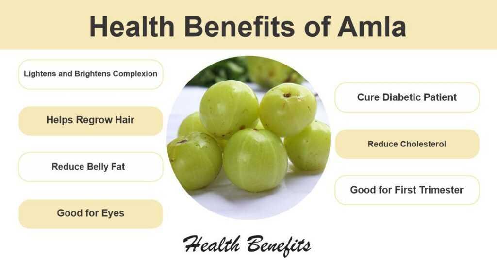 Health Benefits of Amla or Gooseberry