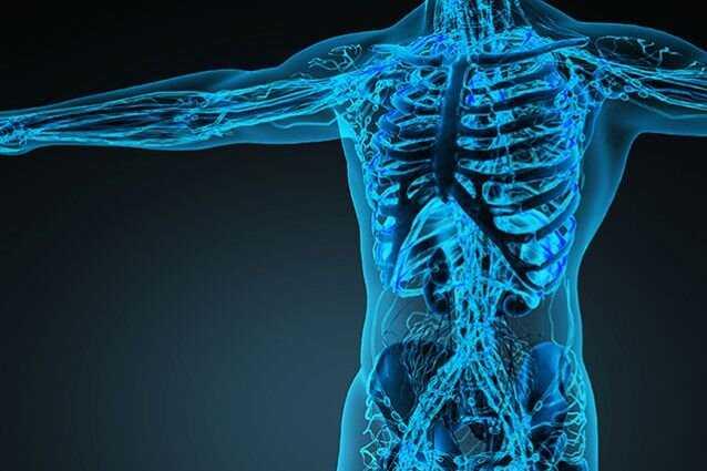 Promotes Bone Strength