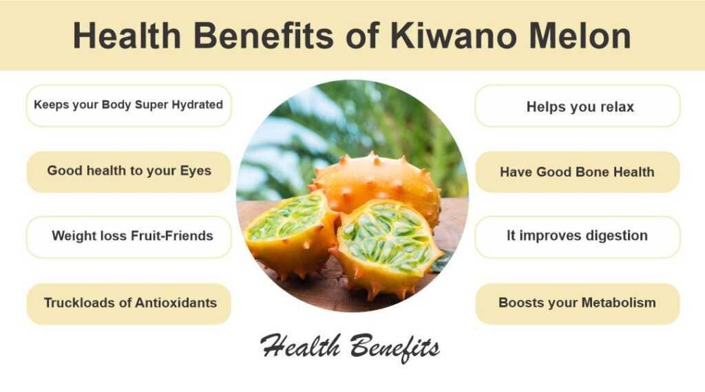 Health Benefits of Kiwano Melon