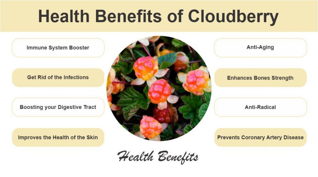 Health Benefits of Cloudberry